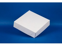 Caja Carton Multiuso Pequeña 22x22,5x3,5 (1x50u)